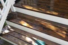 Earthwise Painting LLC - Steps (During)